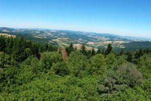 Tour Matagrin - Vue panoramique nature-Vallée du rhones