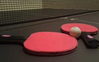 ping-pong-Violay-Loire-Rhone
